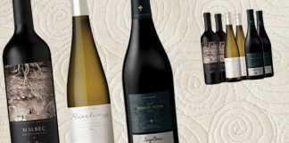 Luigi Bosca vinos de terruño