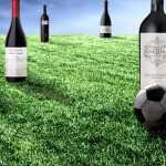 11 vinos argentinos para el seleccionado mundialista