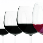 Cabernet Franc ¿El futuro del vino argentino?