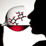 ¿Qué es la complejidad en el vino?