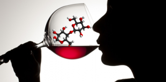 complejidad en el vino