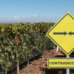 Conocé las siete contradicciones del vino argentino