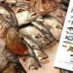 Llega una completa guía de pescados y mariscos argentinos