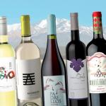 Uco de bolsillo: 20 vinos hasta $200 para conocer los sabores del valle