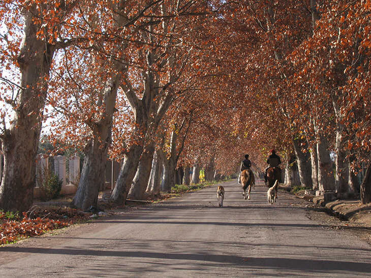Calle Tabanera en otoño.
