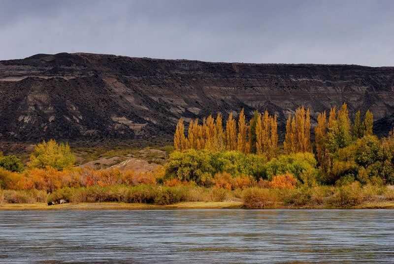 Alameda-y-Bardas-rio-Negro