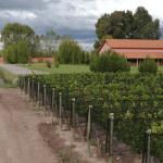 Fabré Montmayou: la mirada francesa del Malbec argentino