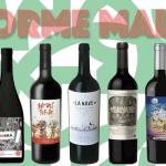 Informe Malbec: 10 mejores y nuevos vinos del Valle de Uco