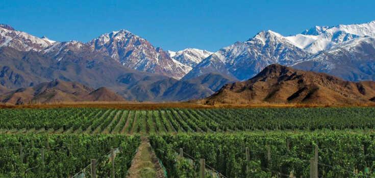 expo vinos patagonia, sur al alcance tu copa