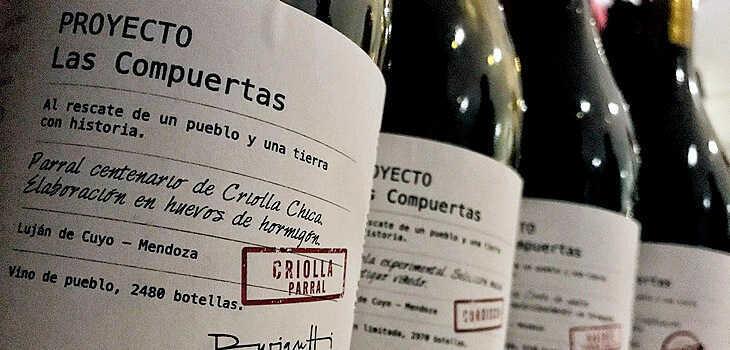 proyecto las compuertas: nuevos vinos hermanos durigutti