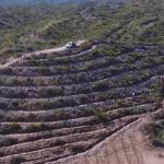 Lanzan Viñas heroicas, un viñedo único en Mendoza