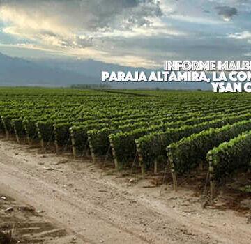 Malbec de Paraje Altamira