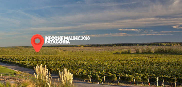 Foto-apertura-patagonia-b