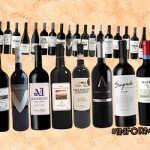 Nuevos terroirs para el Malbec: 15 vinos para descubrir