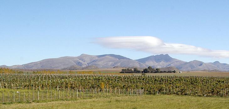 llega 3era jornada vinos provincia buenos aires