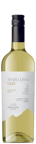 Andeluna Andeluna 1300 Sauvignon Blanc/4038 1