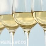 INFORME BLANCOS: los 20 mejores nuevos vinos que vale la pena descubrir