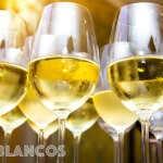 INFORME BLANCOS: estos son los 20 mejores vinos blancos argentinos hasta $300