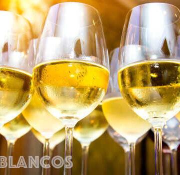 mejores-vinos-blancos-hasta-300