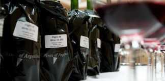 concurso de vinos argentinos