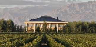 posadas y hoteles con viñedos