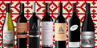 vinos argentinos recomendados