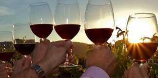 historias de vinos
