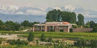 Bodegas Bianchi Valle de Uco