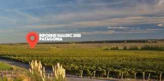 Malbec de la Patagonia