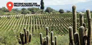 Malbec del Valle Calchaquí