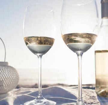 Chardonnay o Sauvignon Blanc