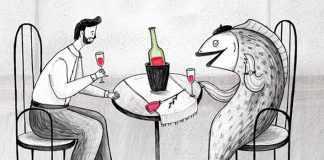 pescado y vino tinto