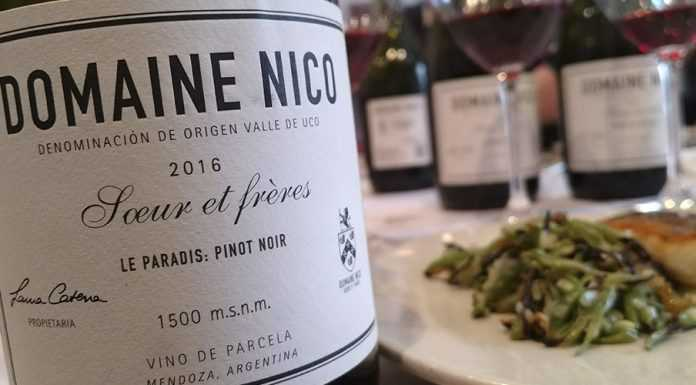 Pinot Noir de Alta Gama