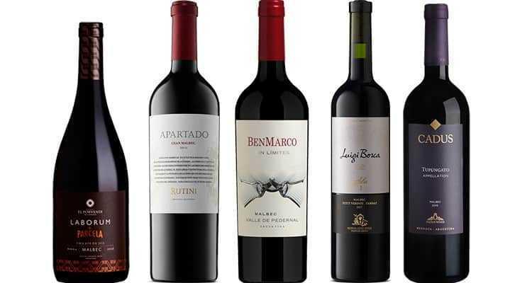 INFORME MALBEC 2019: los 50 mejores vinos del año entre 500 Malbec catados a ciegas 10