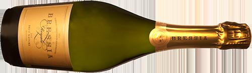 INFORME BURBUJAS 2019: estos son los 30 mejores vinos espumoso de Argentina 3