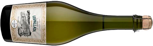 INFORME BURBUJAS 2019: estos son los 30 mejores vinos espumoso de Argentina 8