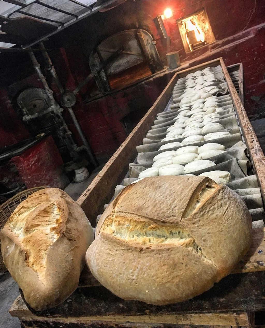Pompeya cero ruinas: la panadería que cumple 100 años y está espléndida 1