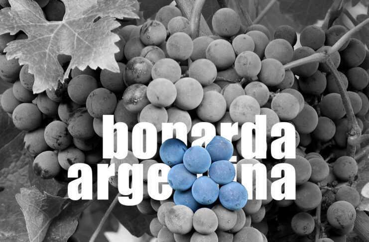 bonarda argentina