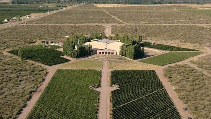 Bodega Salentein & IG San Pablo, la fórmula de los vinos elegantes 1