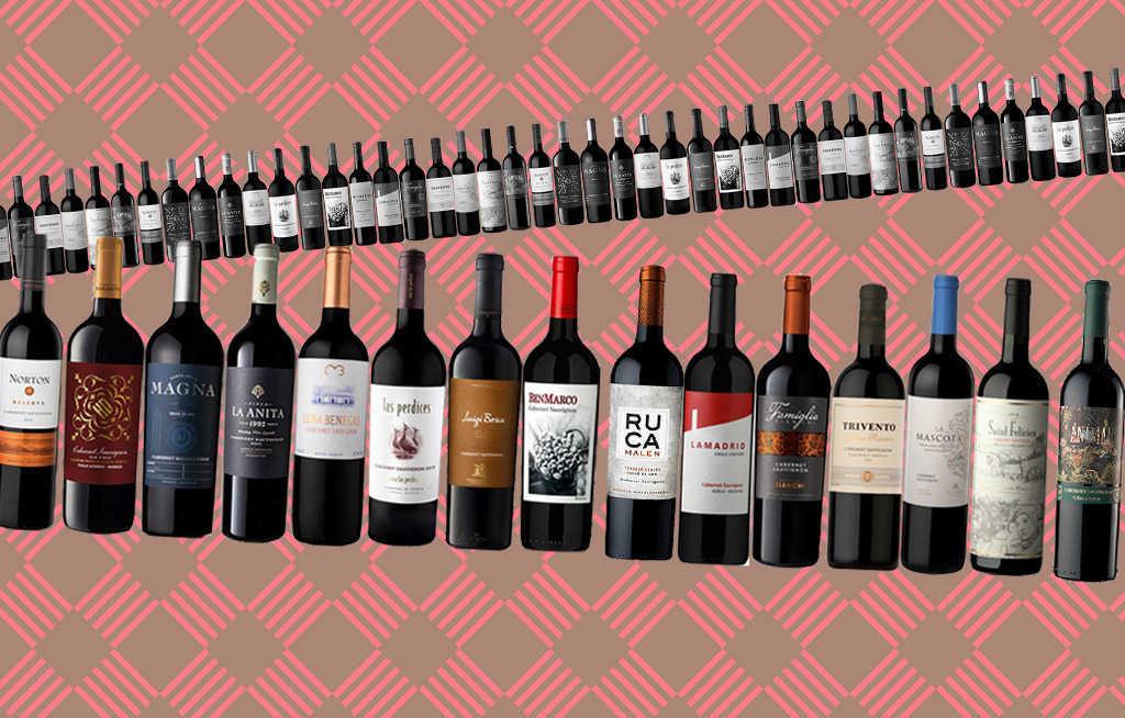 Cabernet Sauvignon argentino 1
