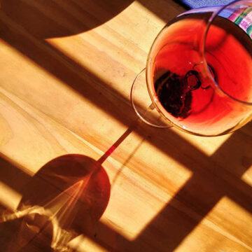 vino pinot noir
