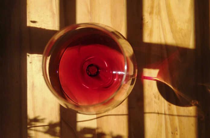 Nuevos vinos argentinos