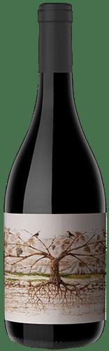 El gusto del terroir: Los mejores Malbec del Noroeste Argentino 8