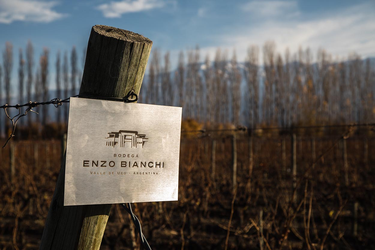 Bodega Enzo Bianchi