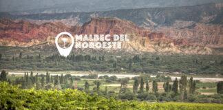 Mejores Malbec del Noroeste argentino