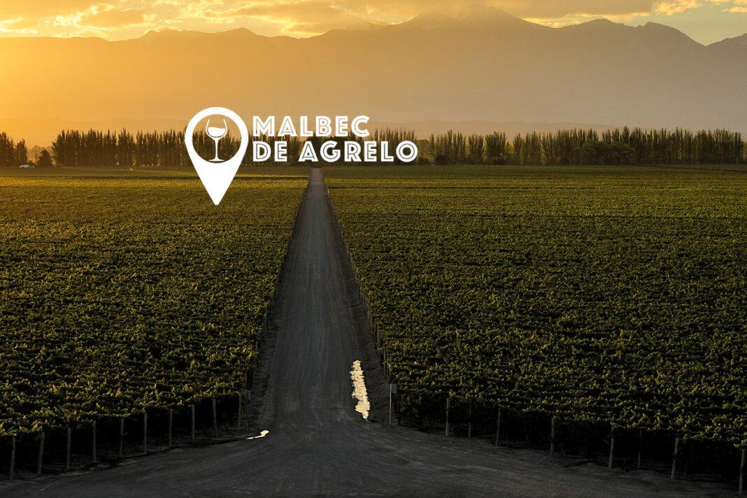Mejores Malbec de Agrelo y Perdriel