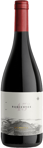 INFORME DE VINOS TINTOS: Los mejores Pinot Noir de Argentina 12