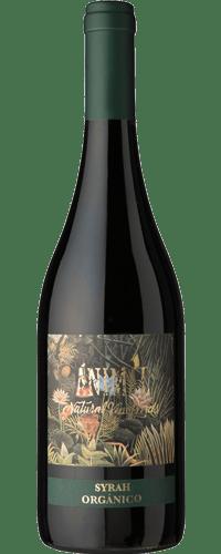 INFORME TINTOS: Los mejores vinos hasta $1000 18