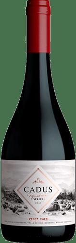 INFORME DE VINOS TINTOS: Los mejores Pinot Noir de Argentina 16