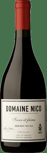 INFORME DE VINOS TINTOS: Los mejores Pinot Noir de Argentina 5